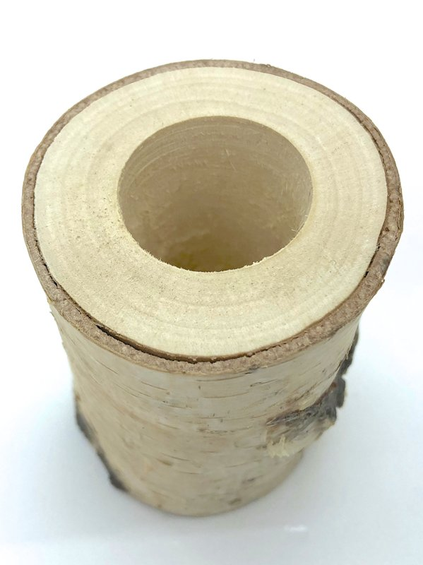 Birch Stump