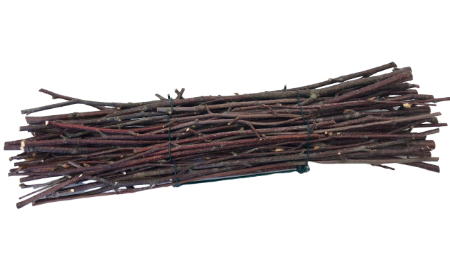 Bundle of Wooden Twigs